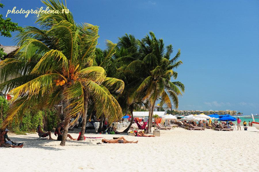 пляж в плая дель кармен