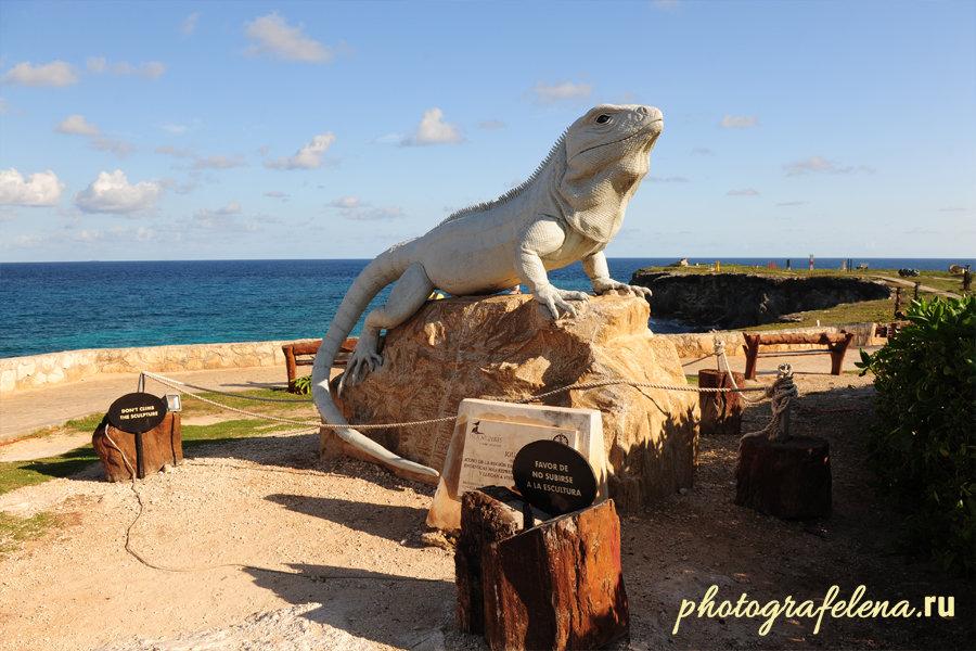 памятник игуане на исла мухерес