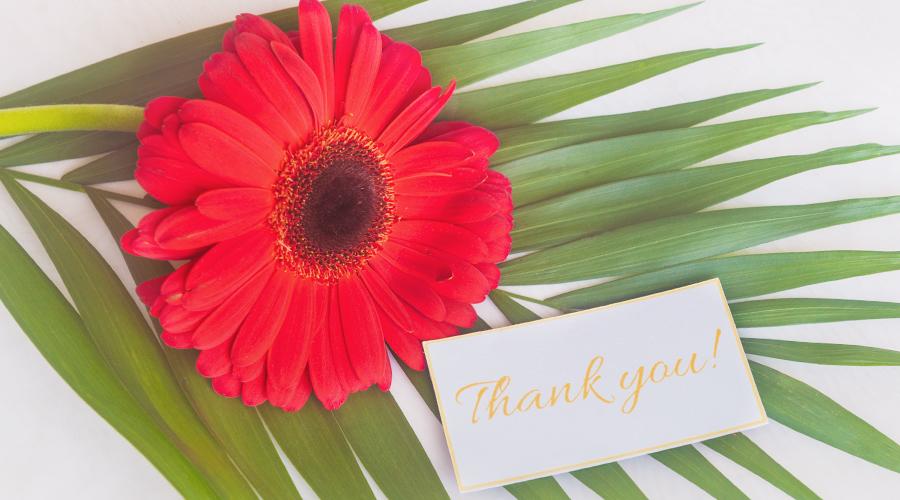 благодарственное письмо клиентам