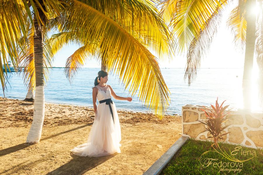 пляж пальмы фото