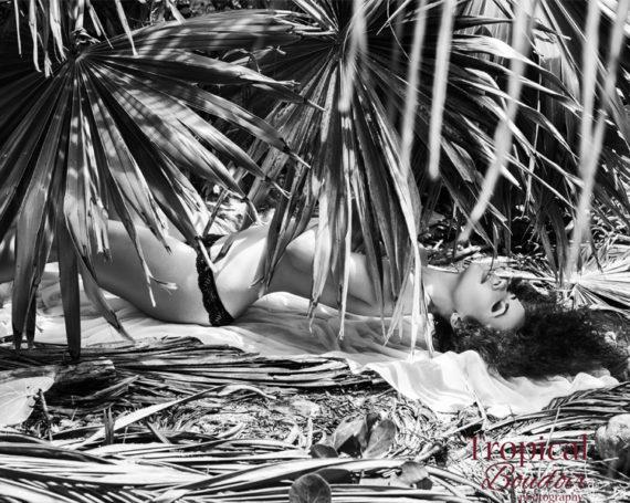 Приоткрывая занавес в мир Tropical Boudoir
