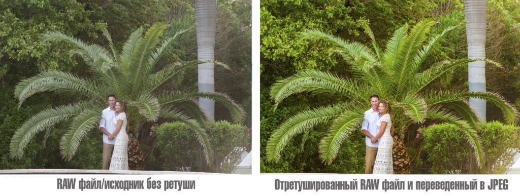 разница raw и jpeg фотографии